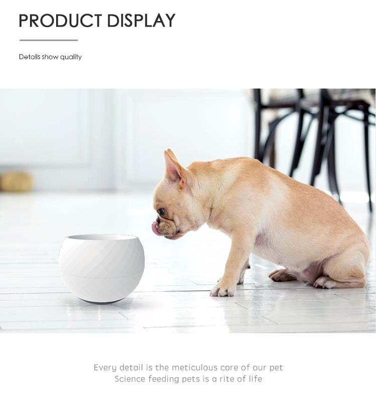 2021 New Design Pet Dog Slow Feed Bowl Colored Anti Choke Plastic Dog Eating Feeding Bowls